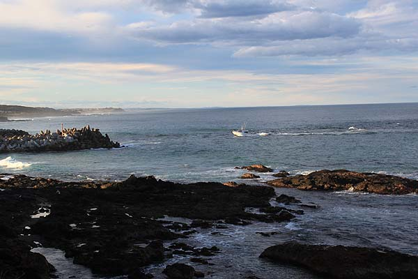 Blog_Narooma_bar_2_IMG_2370.jpg