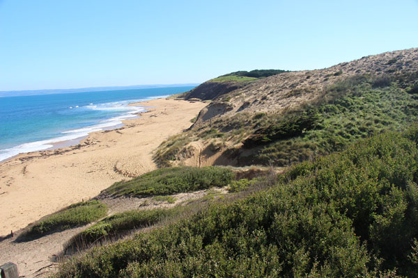 BLOG_Phillip_Island_beach_2_IMG_3884.jpg