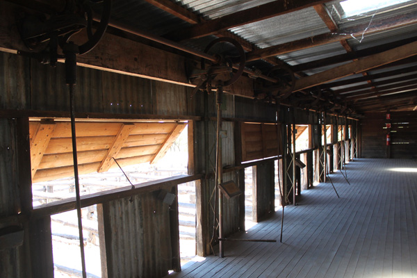 Blog_Kinchega_woolshed_windows_IMG_7436.jpg