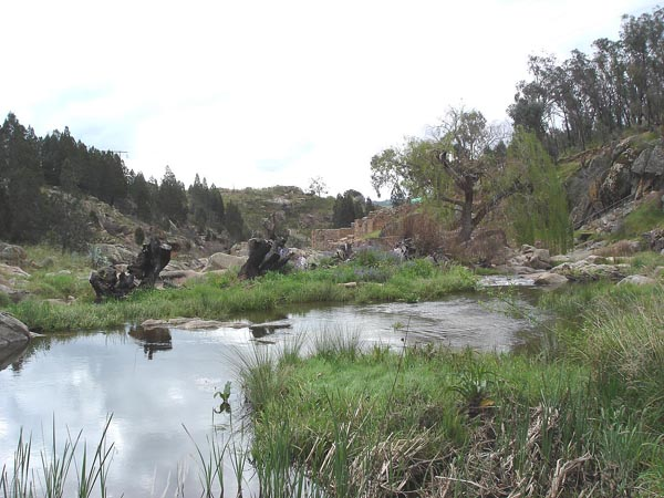 Blog_Adelong_view_from_near_Wilsons_Mill_to_Reefer_site_DSC09511.jpg