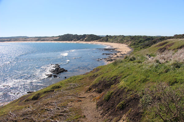 BLOG_Phillip_Island_beach_old_wharf_IMG_3900.jpg