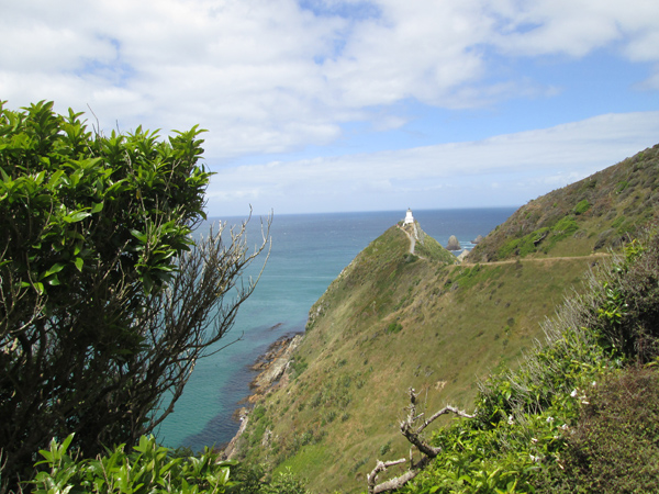 BLOG_NZ_Nuggetts_2_IMG_0238.jpg