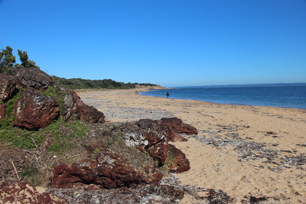 BLOG_Phillip_Island_Red_Rock_beach_IMG_3867.jpg
